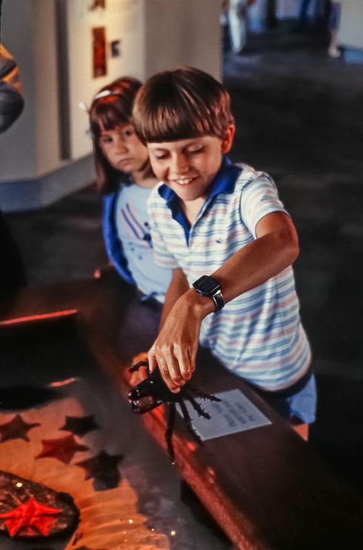 1985 Monterey aquarium