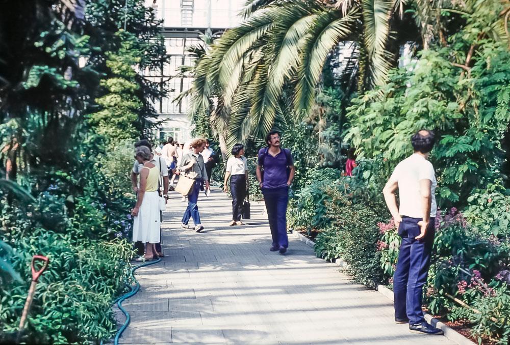 Kew Gardens, June 1986