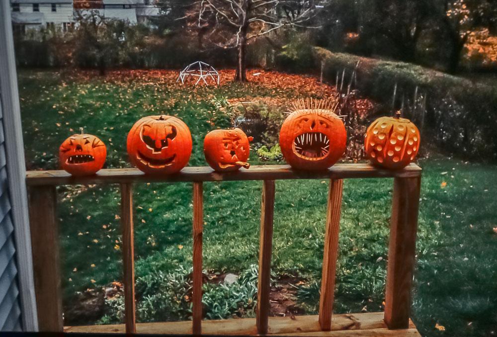 Halloween pumpkins, 2986