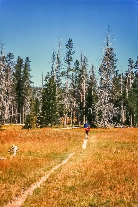 Hiking trail to Shoshone Lake, 2987