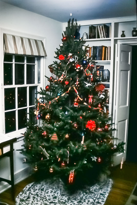 Danforth Charistmas tree, 1987