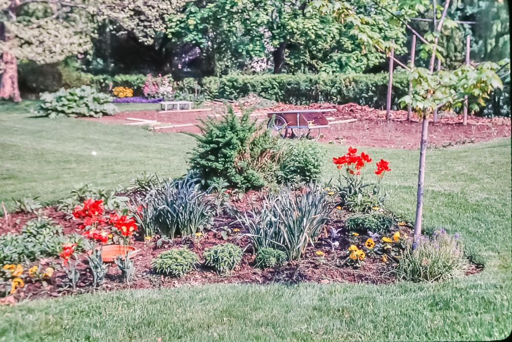 1988 - Danforth gardens