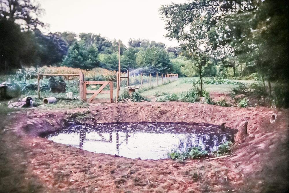 1991 Second pond