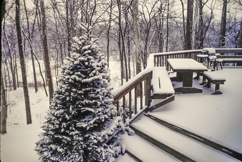 1994 February snow