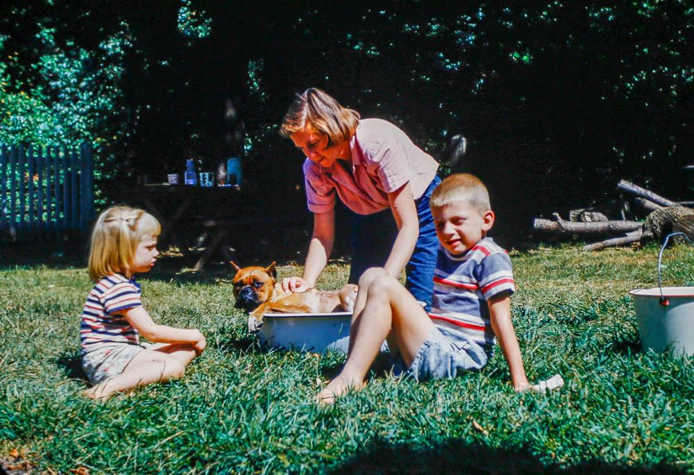 1953 Barbara, Liz, David