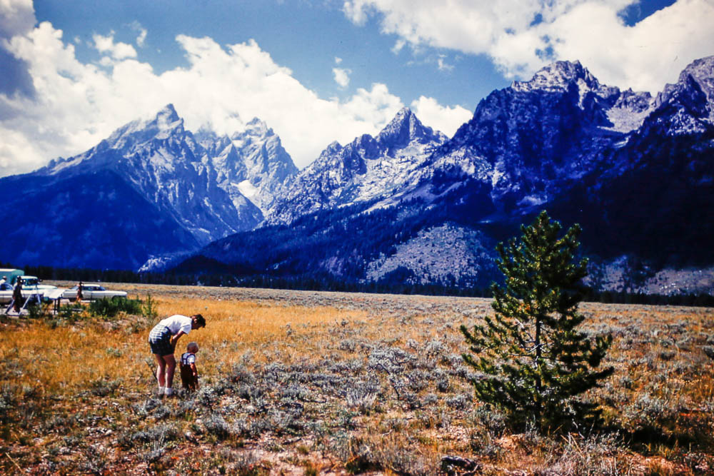 1961 Barbara and Page view the Tetons