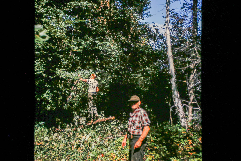 1963 Harry and David clearing for the power line
