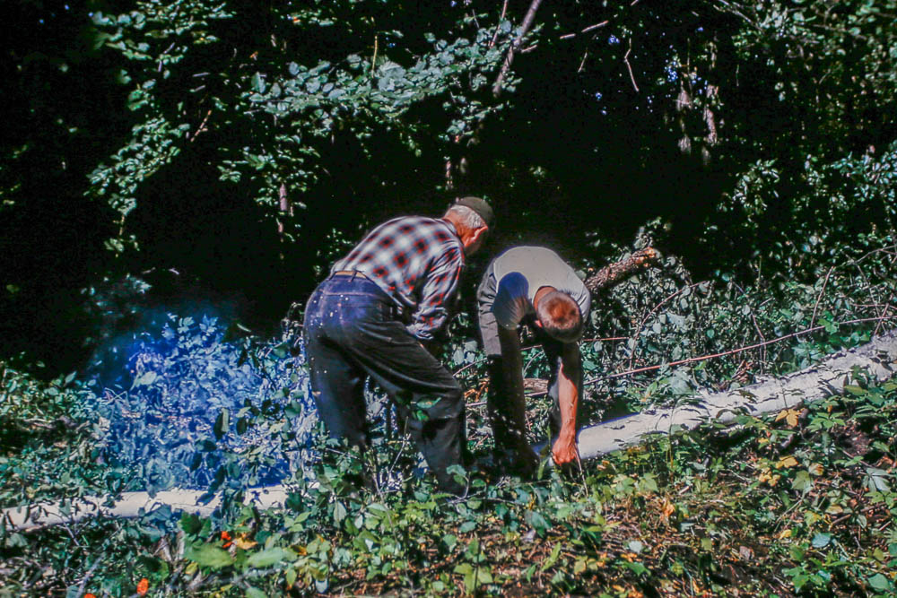 1963 Harry and David clearing for power line