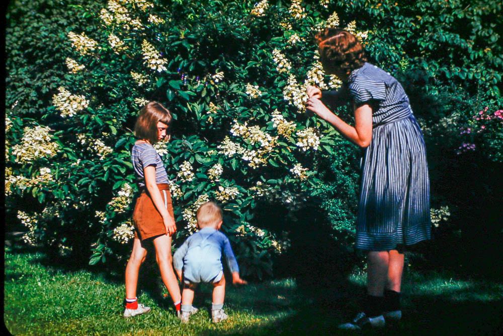 1947 Mary, David, Barbara