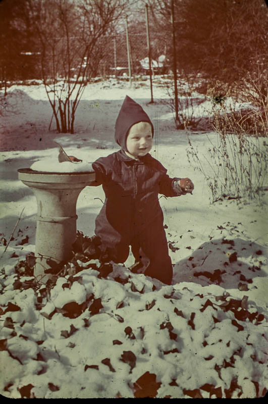 1947 David