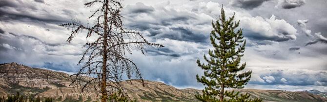 Gros Ventre Wilderness II