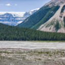 Icefields Again